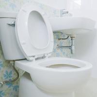 toilet plumber san diego